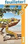 Bradt Madagascar Wildlife: A Visitor'...