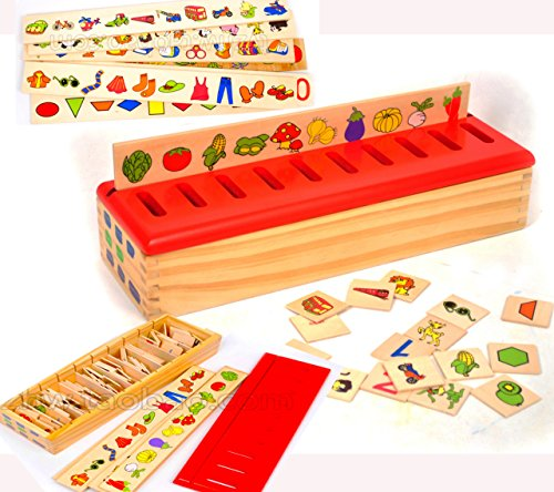 Toys of Wood Oxford Wooden Sorting Box With Sorting Lid 99 Pieces 8 Categories Total 80 Objects - 1