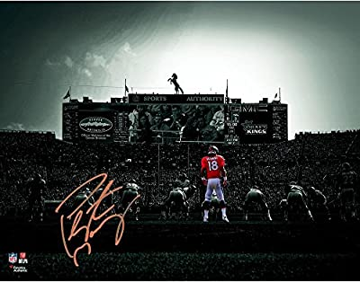 "Peyton Manning Denver Broncos Autographed 11"" x 14"" On Field Spotlight Photograph - Fanatics Authentic Certified"