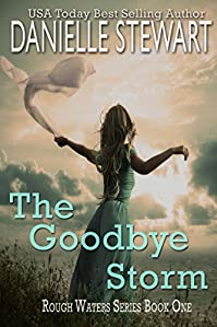 The Goodbye Storm by Danielle Stewart ebook deal