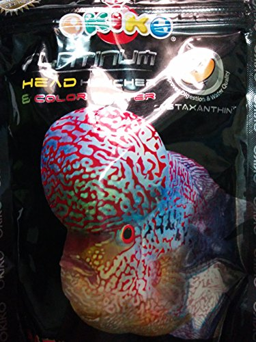 OKIKO PLATINUM Head Huncher & Color Faster 100g (Best food for Flowerhorn  Head and color development) ** COLOURFUL AQUARIUM **