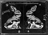 Cybrtrayd E100 5-Inch Bunny Chocolate/Candy Mold with Exclusive Cybrtrayd Copyrighted Chocolate Molding Instructions