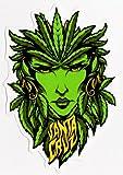 Santa Cruz Weed Goddess Skateboard Sticker - skunk cannabis marijuana hemp dope