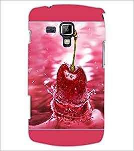 PrintDhaba Cherry D-1379 Back Case Cover for SAMSUNG GALAXY S DUOS S7562 (Multi-Coloured)