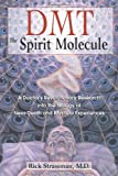 DMT: The Spirit Molecule: A Doctors Revolutionary Research into the Biology of Near-Death and Mystical Experiences