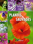 ENCYCLOPEDIE VISUELLE DES PLANTES SAU...