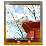 Beverly Turner Cat Photography - Greened Eyed White Cat on Patio Railing with Cloudy Sky - Desk Clocks - 6x6 Desk Clock - dc_192625_1