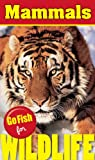 Go Fish for Wildlife: Mammals