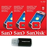 SanDisk 16GB (3 Pack) MicroSD HC Memory Card SDSDQAB-016G (Retail Packaging) LOT OF 3 With Everything But Stromboli...