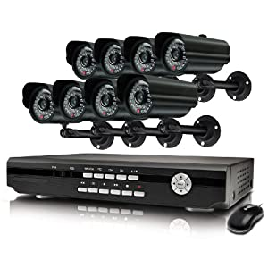 Swann Alpha D03C6 SWA43-D3C6 8-Channel H.264 Security DVR and 8 Weather-Resistant Cameras