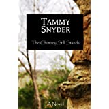 "The Chimney Still Stands (Kindle Edition) tagged ""christian"" 36 times"