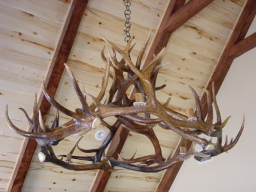Cheap antler chandelier aloadofball Choice Image
