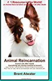 Animal Reincarnation: Everything You Always Wanted to Know! about Pet Reincarnation Plus How to Techniques to See, Feel & Communicate with Y