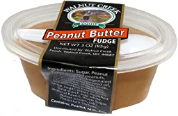 Amish Fudge Cup * Peanut Butter * 3 oz with Spoon