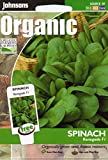Johnsons Seeds - Pictorial Pack - Vegetable - Spinach Renegade F1 (ORGANIC) - 250 Seeds