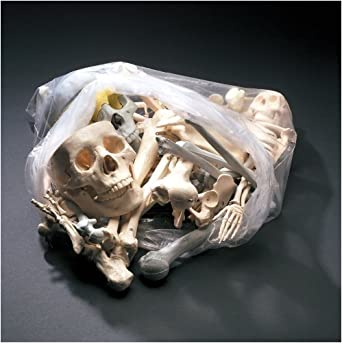Anatomical Chart Co. Bags of Bones Item #: BONES1
