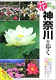 花散歩神奈川を歩く (ブルーガイド)
