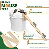 FABU Plank Mouse Trap from Oak Wood - RAMP INCLUDED - Walk The Plank Mouse Trap Auto Reset - Humane Bucket Rat Trap - Kill or Live Catch Mice & Other Pests & Rodents