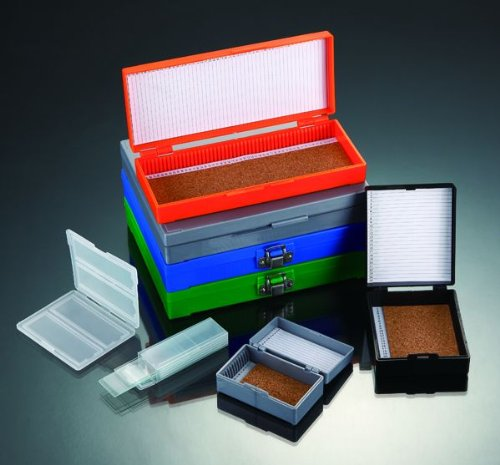 Biorx Plastic Storage Boxes For Microscope Slides, With Nickel Plated Clasp And Hinge Pin, Color: White (Qty. 1)