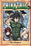 Fairy Tail 41