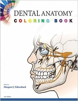 Dental Anatomy Coloring Book 1e Amazoncouk SAUNDERS