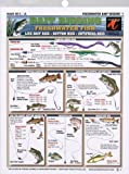 Fishermans - Freshwater Bait Rigging #1