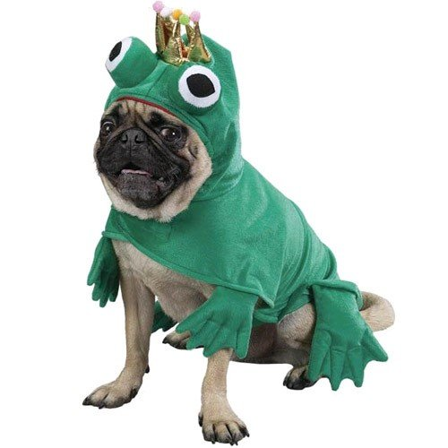 [Prince Of Frogs Costume - XSMALL [Misc.]] (Prince Frog Costumes)