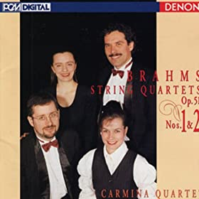 String Quartet No. 1 in C Minor, Op. 51: IV. Allegro