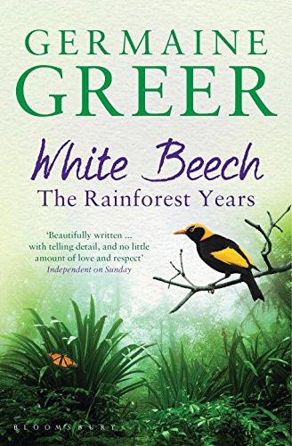 white-beech-the-rainforest-years