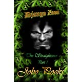 Django Zoon. The Straightener. Book 1 (The Straightener book 1)