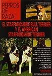 Staffordshire bull terrier y el ameri...