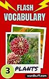 Flash Vocabulary Builder #3: 101 Plants (Flash Vocabulary Builders)