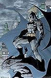 (22x34) Batman - Cape Poster