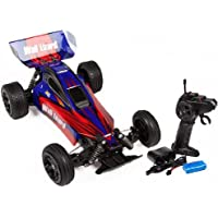 Blue Wall Lizard Offroad 2.4GHz 1:18 RTR Electric RC Buggy