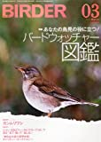BIRDER (バーダー) 2012年 03月号 [雑誌]