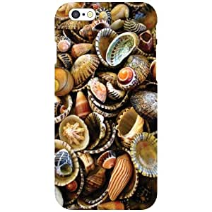Printland Colorful Shells Phone Cover For Apple iPhone 6