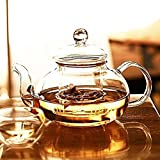 Zen Room 22oz Lead Free Heat Resistant Borosilicate Glass Teapot with Glass tea Infuser and warmer for loose tea✪6 pieces 1.7oz Double Ultra Clear Borosilicate Glass Cups✪Dishwasher Microwave Safe