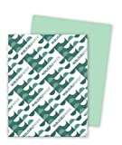 Wausau Exact Premium Cover Paper, 65 lb, 8.5 x 11 Inches, Pastel Green, 250 Sheets (68741)