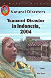 Tsunami Disaster in Indonesia, 2004 (Natural Disasters)