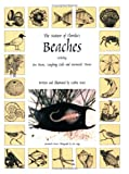 The Nature of Florida's Beaches Including Sea Beans, Laughing Gulls and Mermaids' Purses