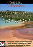 Nature Wonders YELLOWSTONE NATIONAL PARK USA [DVD] [2012] [NTSC]
