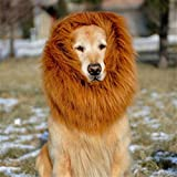 GABOSS Lion Mane Costume for Dog, Dog Lion Wig for Dog Large Pet Festival Party Fancy Hair Dog Clothes (Brown)