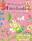 Penny Dann The Secret Fairy in Fairyland (Secret Fairy)
