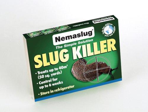 nemaslug-slug-killer-standard-pack-treats-40-sq-m