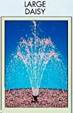 51ZWCM%2BUIGL. SL160  Maxi Daisy Fountain Head