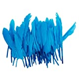 Nsstar Home Decor Decoration Goose Feather (Blue)