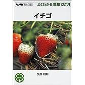 イチゴ (NHK趣味の園芸よくわかる栽培12か月)