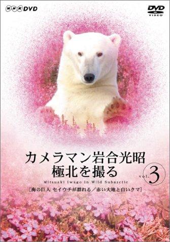 カメラマン岩合光昭 極北を撮る vol.3 [DVD]
