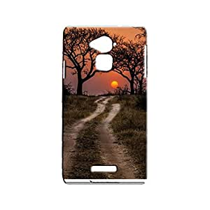 BLUEDIO Designer Printed Back case cover for Coolpad Note 3 - G2483