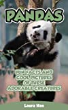 Pandas- Fun Facts And Cool Pictures Of These Adorable Creatures